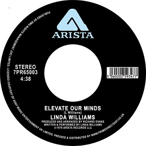ELEVATE OUR MINDS (7 inch)
