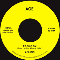 ECOLOGY (7 inch) -pre-order-