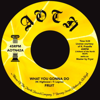 WHAT YOU GONNA DO (7 inch)