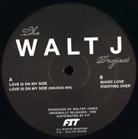 THE WALT J PROJECT