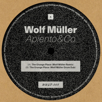THE ORANGE PLACE (Incl. WOLF MÜLLER REMIXES)