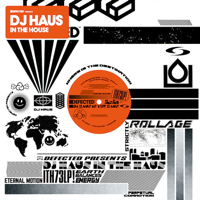 IN THE HOUSE (INCL DJ STEAW, DJ OCTOPUS etc REMIXES)(W-PACK) -pr
