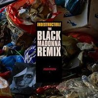 INDESTRUCTIBLE (THE BLACK MADONNA REMIX) -pre-order-