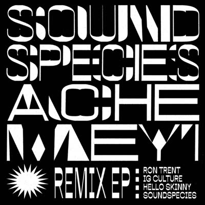 REMIX EP (inc. RON TRENT/ I.G. CULTURE REMIXES)