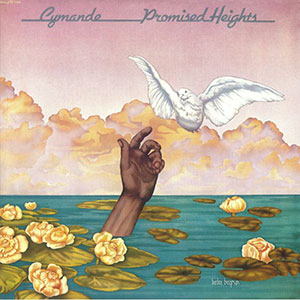 PROMISED HEIGHTS (LP) -RSD LIMITED-