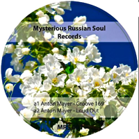 MYSTERIOUS RUSSIAN SOUL VOL.1