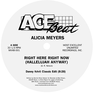 RIGHT HERE RIGHT NOW (HALLELUJAH ANYWAY)-DANNY KRIVIT EDIT