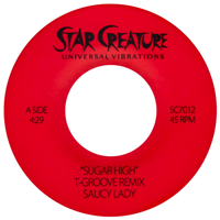 T GROOVE (REMIXES) (7 inch)