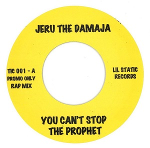 YOU CAN'T STOP THE PROPHET (7 inch)