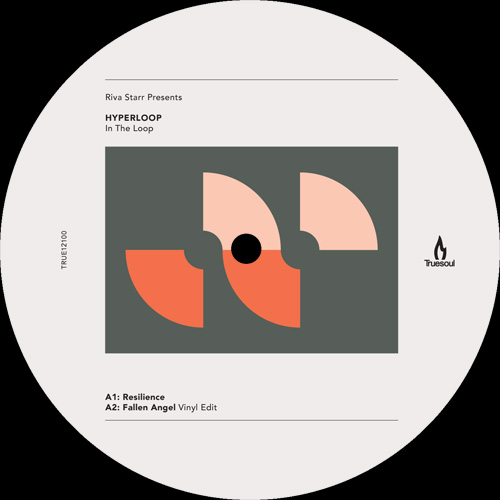 IN THE LOOP (TERRENCE PARKER / TIGER STRIPES REMIXES)