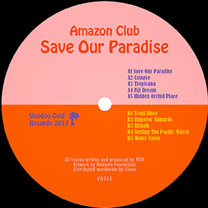 SAVE OUR PARADISE (MINI-LP)