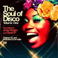 THE SOUL OF DISCO VOLUME 1 (W-PACK)
