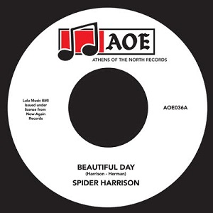 BEAUTIFUL DAY (7 inch)