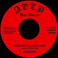 THESE ARE THE GOOD TIMES (7 inch)
