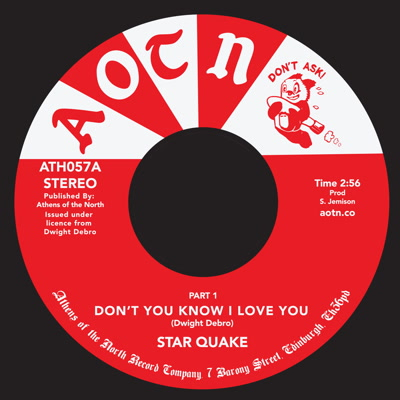 DON'T YOU KNOW I LOVE YOU (7 inch)