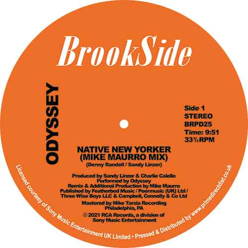 NATIVE NEW YORKER / USE IT UP AND WEAR IT OUT (MIKE MAURRO MIXES