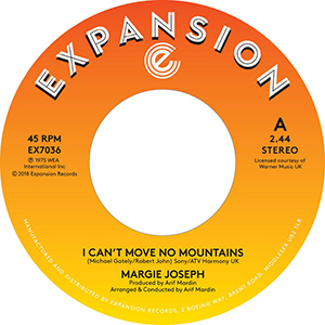 I CAN'T MOVE NO MOUNTAINS (7 inch)