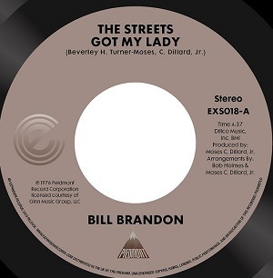 THE STREETS GOT MY LADY (7 inch)