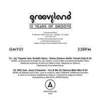 10 YEARS OF GROOVE (DELANO SMITH/DJ SPINNA/etc REMIXES)