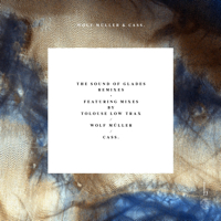 THE SOUND OF GLADES REMIXES