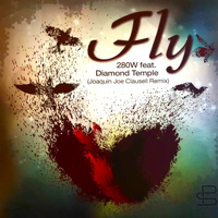 FLY (JOAQUIN JOE CLAUSSELL'S REMIXES)