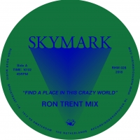 FIND A PLACE IN THIS CRAZY WORLD -RON TRENT REMIX