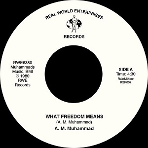 WHAT FREEDOM MEANS (7 inch)