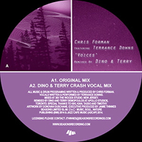 VOICES (feat. TERRANCE DOWNS) (DINO & TERRY REMIXES)