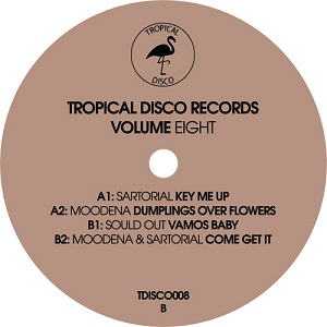 TROPICAL DISCO EDITS VOL. 8